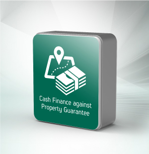 Cash Finance against Property Guarantee